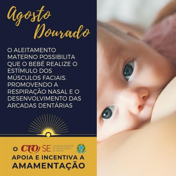 CRO-SE se soma à campanha Agosto Dourado de valorização e incentivo à amamentação
