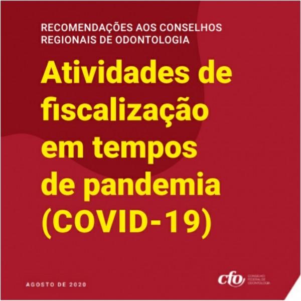 CFO apresenta recomendações aos Conselhos Regionais para fiscalização profissional em tempos de pandemia